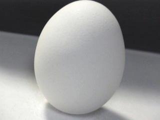 卵1個.jpg
