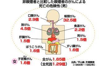 喫煙者のがん.jpg