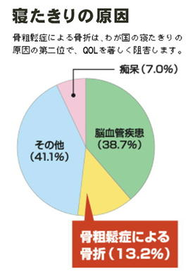 寝たきりの原因 円グラフ.jpg