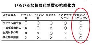 抗酸化力4種類.jpg