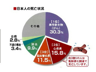 日本人の死亡状況.jpg