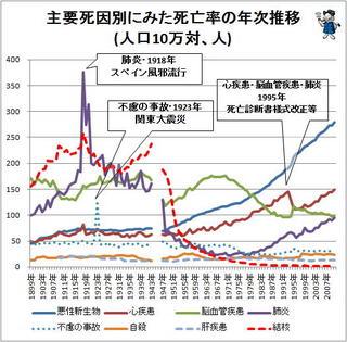日本人の死因.jpg