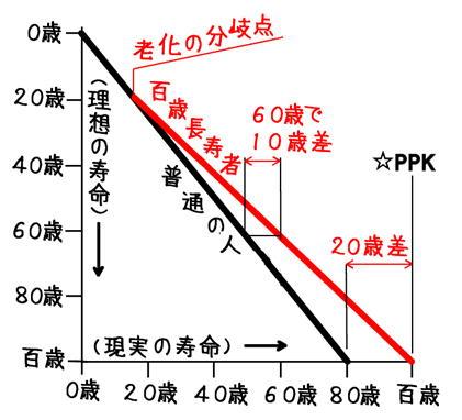 普通の寿命と百歳長寿の寿命グラフ.jpg