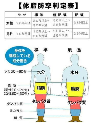 標準 肥満.jpg