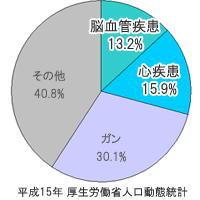 死亡原因の円グラフ.jpg