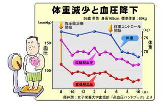 減量と血圧の関係.jpg