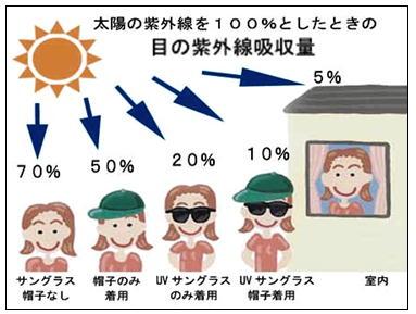 目の紫外線吸収量.jpg