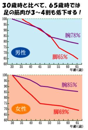 筋肉の低下グラフ.jpg