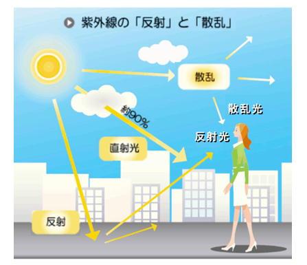 紫外線の反射と散乱.jpg