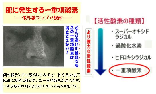 肌に発生する一重項酸素.jpg