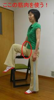 腸腰筋体操2修正.jpg