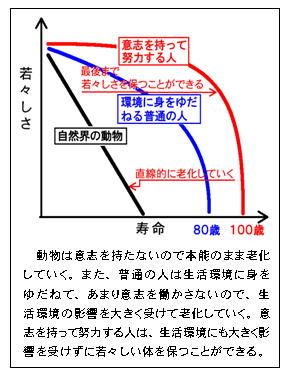 若々しさと寿命グラフ.jpg
