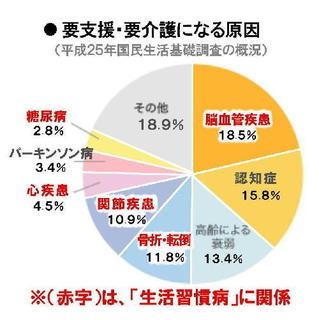 要介護になる原因円グラフ.jpg