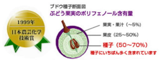 農芸化学技術賞.jpg