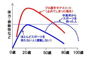 運動のアンチエイジンググラフ.jpg