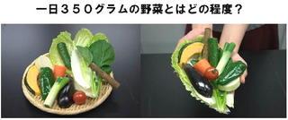 野菜350グラム.jpg