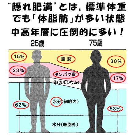 隠れ肥満とは、標準体重でも・・・.jpg