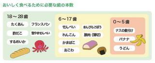 食べ物と歯の本数.jpg
