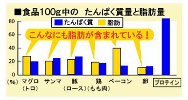 食品のたんぱく質量と脂肪量.jpg