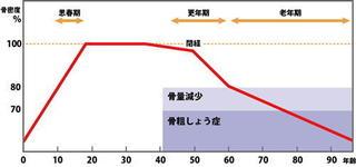 骨密度グラフ新.jpg