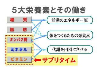 5大栄養素.jpg