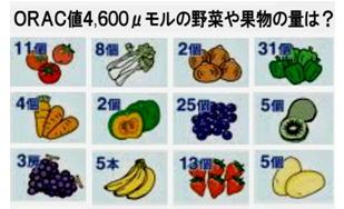 ORAC値4600モルの野菜・・・.jpg